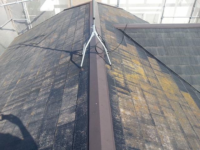 カビた屋根の写真