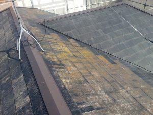 コケのついた屋根