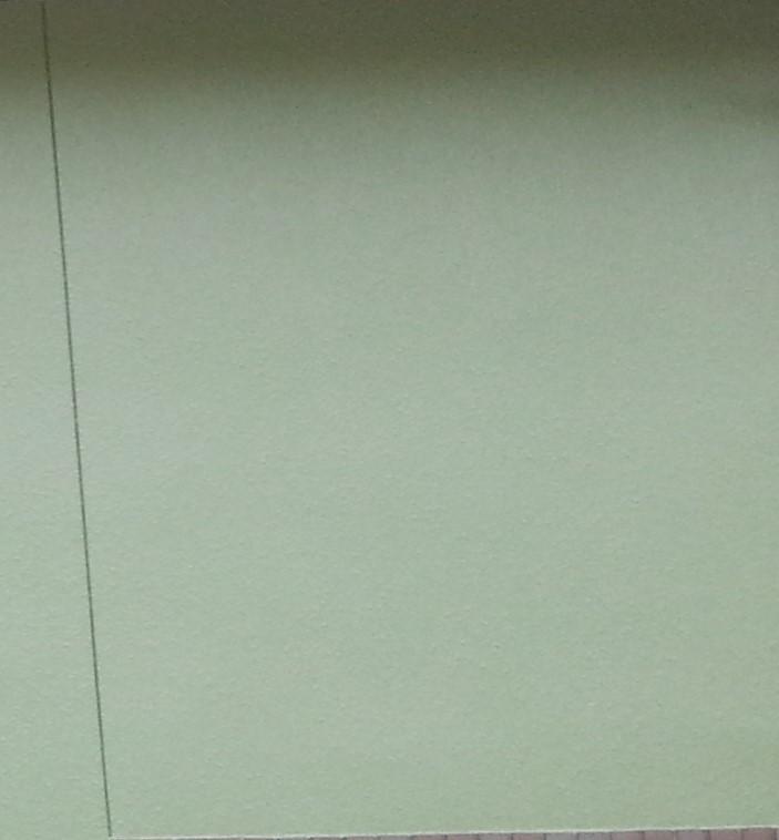 外壁グリーン塗装後