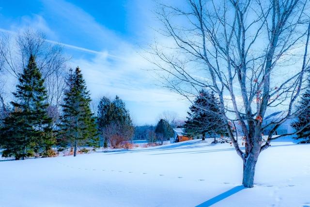 冬 寒い季節